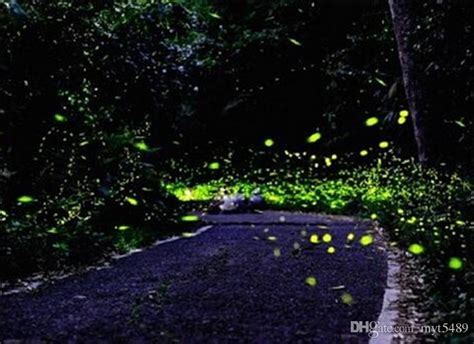 outdoor led firefly lights firefly magic solar battery operated 220v yellow light