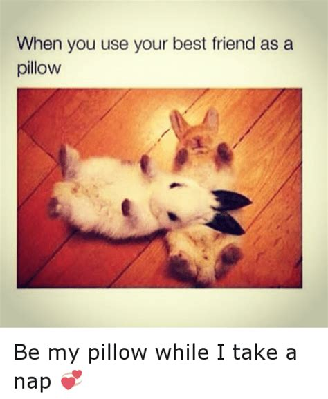 My Nap Friend Pic best friends memes of 2016 on sizzle 9gag