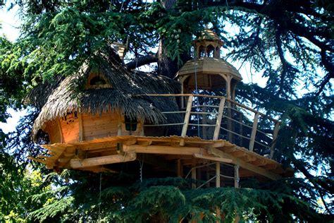 chambre cabane dans les arbres cabane dans les arbres gling misez sur le cing