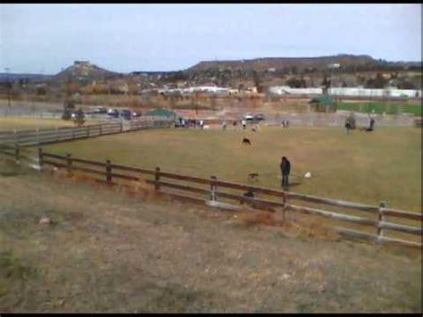 leash park denver park denver plum creek castle rock co fairgrounds leash park