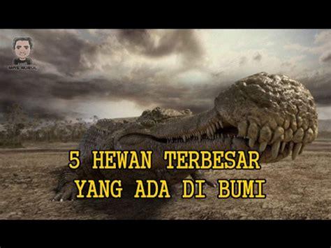 film bagus yang ada di youtube mengerikan 5 hewan terbesar yang ada di dunia youtube