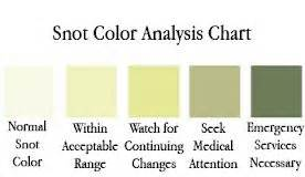 phlegm color chart what does the color of your snot and lung phlegm