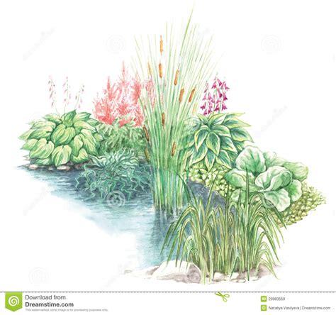 disegno giardino disegno giardino di poco stagno illustrazione di stock