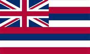 hawaii state colors hawaii state flag coloring pages usa for