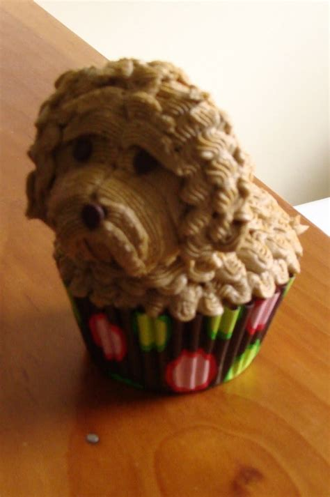 sweet treats  bonnie doggie cupcakes cockapoo westie