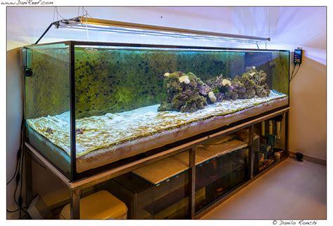 acquario per casa prezzi acquario casa funzionamento e prezzi idee per interni e