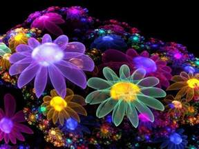 colors of flowers bright colors images colourful flowers wallpaper and