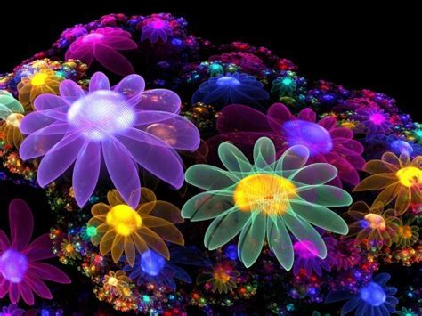bright colors images colourful flowers wallpaper and background photos 17227068