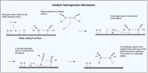 hydration and hydrogenation catalytic hydrogenation of alkenes chemistry libretexts
