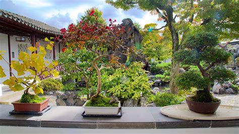 Garden Vancouver Dr Sun Yat Sen Classical Garden Pictures View