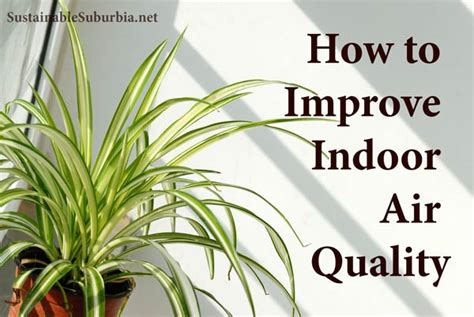 how to improve indoor air quality sustainable suburbia