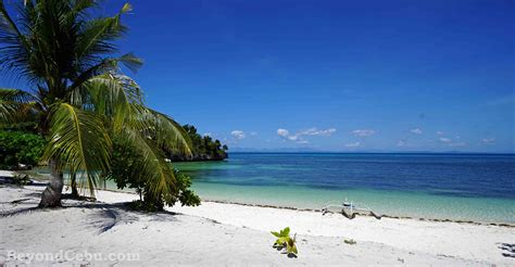 dive resort beautiful in malapascua island cebu 3