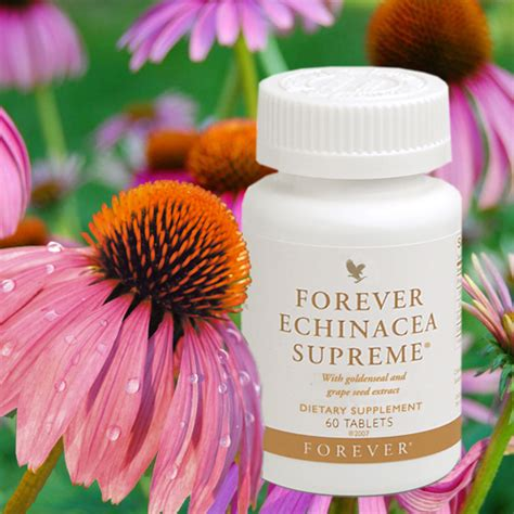 forever echinacea supreme forever echinacea supreme de forever living products