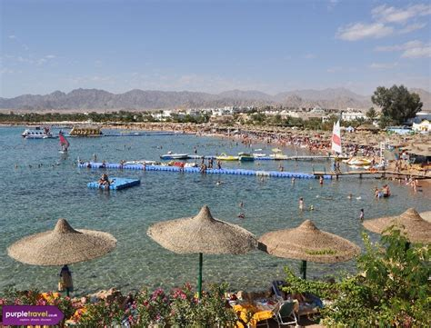 best hotel in naama bay cheap hotels naama bay sharm el sheikh purple travel