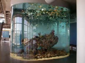 Aquarium Design Ideas by Indoor How To Decorate Fish Tank Designs Ideas