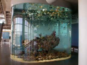 How to Decorate Fish Tank Designs Ideas   Vissbiz