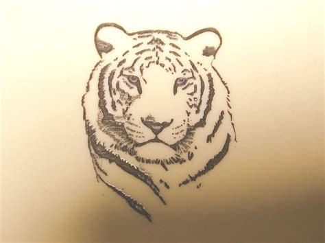 simple tiger tattoo designs 17 best ideas about white tiger on