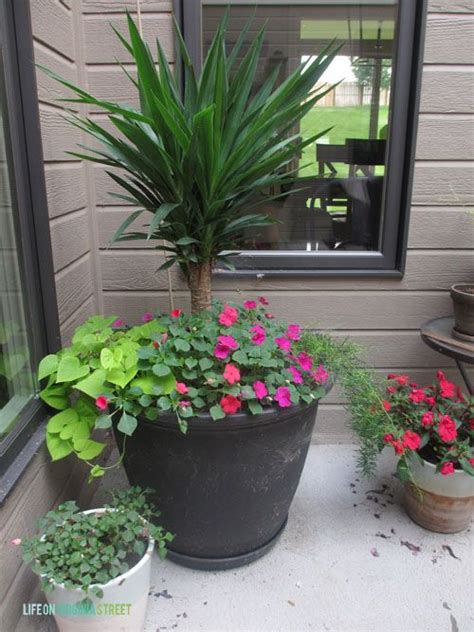 Virginia Planters by Removing Grass Expanding Flowerbeds Virginia Summer