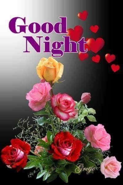 assortment  roses good night image pictures