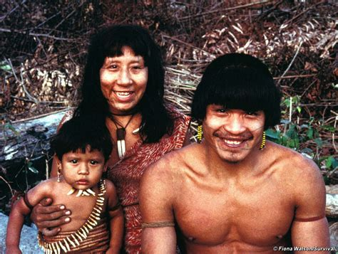 amazon tribe brazil harpy eagle tribe and uncontacted neighbors in