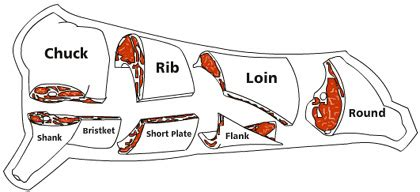 prime rib diagram september 2008 steak enthusiast