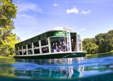 homosassa glass bottom boat tours silver springs state park cape leisure corporation