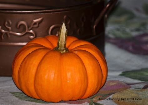 pumpkin paintings growing your homeschool pumpkin painting ideas