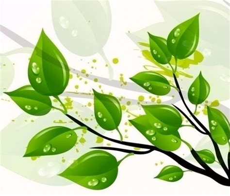 wallpaper vector daun nature green leaves vector background 15348 welovesolo