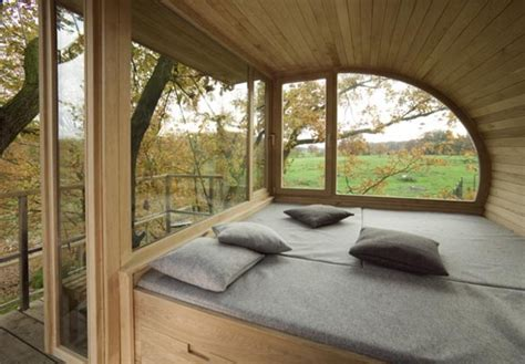 nature themed house tree houses nature with architecture impact lab