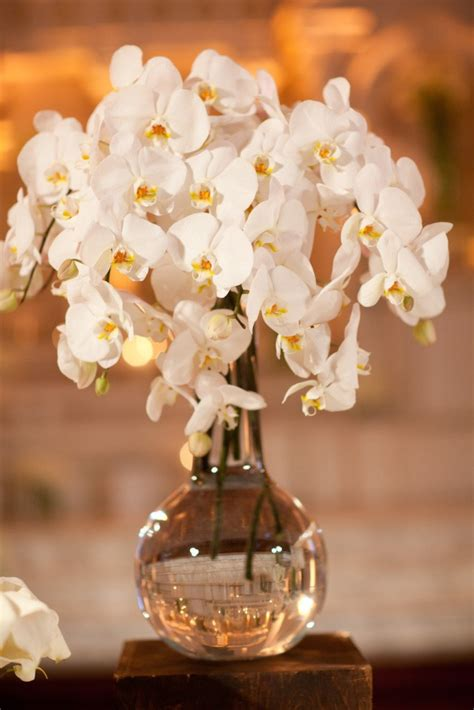 white orchid centerpieces gorgeous white orchid centerpiece inspiration b lovely events