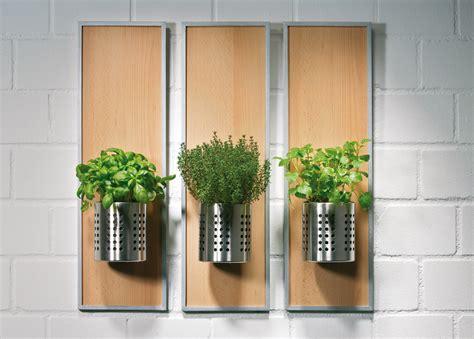 piante per cucina portavasi per erbe aromatiche in cucina bricoportale