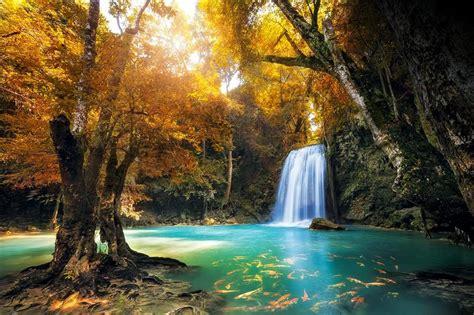 imagenes lugares bonitos imagenes de jardines y lugares mas hermosos del mundo