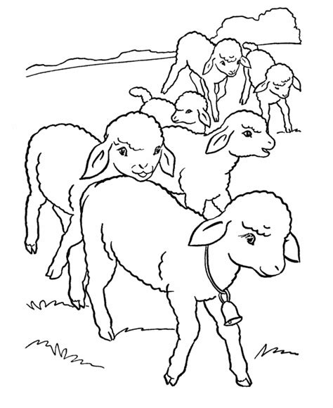 free coloring pages of and lamb