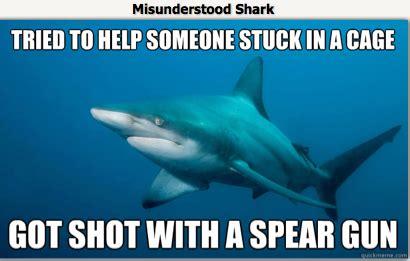 Scuba Diving Meme - image gallery scuba meme