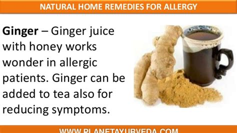 herbal remedies for allergies home treatment for herpes