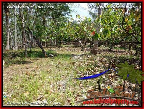 Sale Aspal Lebar property jual tanah murah di tabanan bali untuk