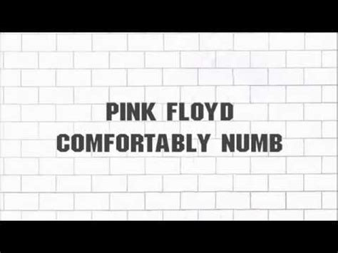 pink floyd comfortably numb youtube pink floyd comfortably numb 2011 remaster 5 1