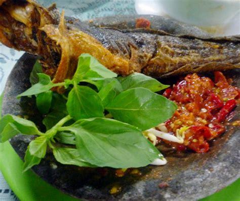Bibit Ikan Lele Jawa Timur pecel lele berasal dari jawa tengah atau jawa timur