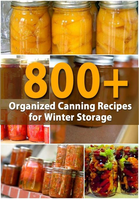 simply storage winter garden 38 best fruits images on fruit healthy