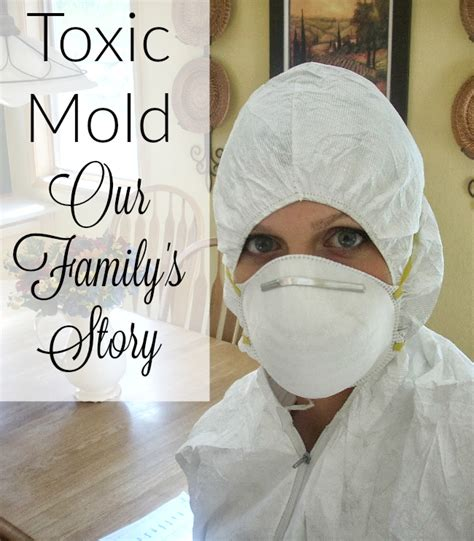 Black Mold Detox by Our Toxic Mold Exposure Timeline Of Events It Takes Time
