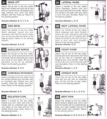 gold xr45 exercise chart pdf
