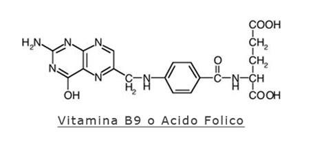 vitamina b9 alimenti gli alimenti ricchi di vitamina b9 o acido folico o vitamina m