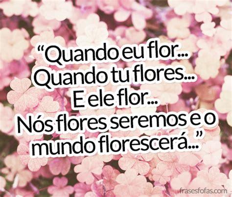 frases de rosas frasesypensamientoscomar top 14 frases com flores
