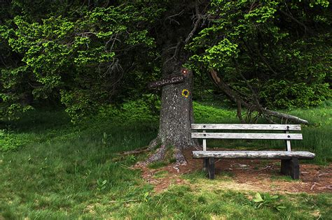 mini park bench post your quot park bench quot quot or quot picnic table quot images page 2