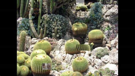giardino esotico di monaco le jardin exotique de monaco
