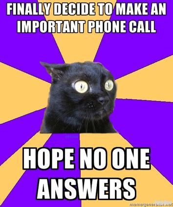 Anxiety Cat Memes - 15 best cat memes ever