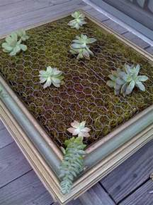 How To Make A Vertical Garden With Succulents Diy Framed Vertical Succulent Garden 1001 Gardens
