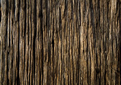 wood texture photoshop wood background textures gipsyblood s