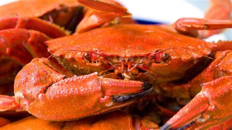 how to cook crab preparation and serving