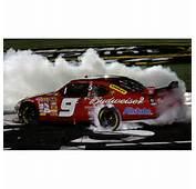 2008 Kasey Kahne 1/24th Budweiser All Star Win Car